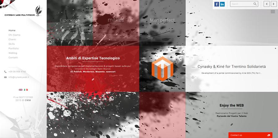 cynasky-web